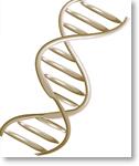 Genetics and Proteomics Programme